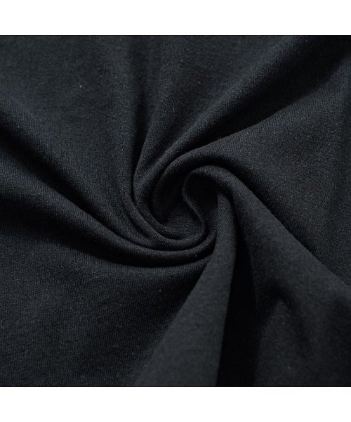 CavariA(キャバリア)/CavariA【キャバリア】USAコットン刺繍入り袖プリント クルーネック 長袖 Tシャツ/CASB20-05_img15
