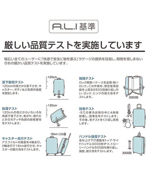 ASIA LUGGAGE(アジアラゲージ)/アジアラゲージ アリマックス2 スーツケース 機内持ち込み Sサイズ 35L フレーム  ALI-011R-18/ali-011r-18_img15