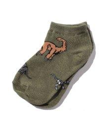 SHIPS KIDS/Jefferies Socks:ダイナソー ローカット ソックス 3/001423334