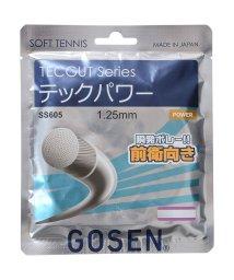 GOSEN/ゴーセン/TECPOWER/500004760