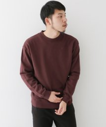 URBAN RESEARCH/【WAREHOUSE】コットン裏毛L/STEE/500113959