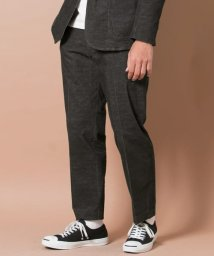 URBAN RESEARCH/URBAN RESEARCH Tailor コーディーセットアップパンツ/500182737