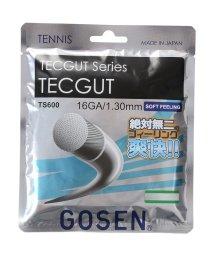 GOSEN/ゴーセン/TECGUT 16/500191178