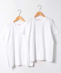 JNSJNM/【HANES】JAPAN FIT CREW WHITE/500210608