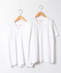 JNSJNM/【HANES】JAPAN FIT V WHITE/500210609