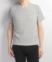Alpine DESIGN/アルパインデザイン/メンズ/胸ポケットTシャツ ジャガード/500240641