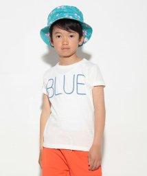 RUGGEDWORKS/カラー半袖Tブルー/500254214