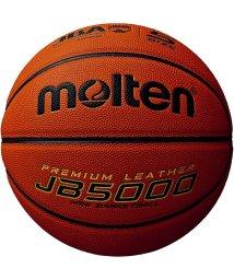 molten/モルテン/キッズ/合皮ミニバスケット検定球 5号/500298610