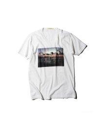ROSE BUD/フォトプリントTシャツ/500365981