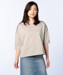 Rie Miller/スビンMIX天竺ビッグTシャツ/500384914