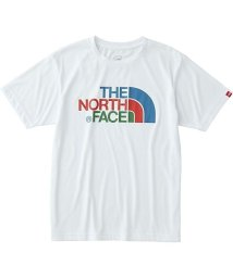 THE NORTH FACE/ノースフェイス/メンズ/S/S COLORFUL LG T/500388958