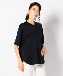 ICB(LARGE SIZE)/【洗える】Luster Smooth Jersey カットソー/500440781