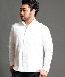 HIDEAWAYS NICOLE L/<大きいサイズ>イタリアンカラーシャツ/500444348