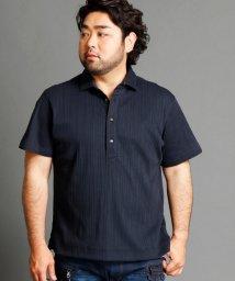 HIDEAWAYS NICOLE L/ランダムテレコ半袖ポロシャツ/500448037