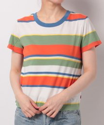 LEVI'S LADY/SURF TEE WALKER STRIPE LODEN FROST/TIGER/500535872