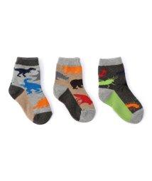 SHIPS KIDS/Jefferies Socks:アニマル ソックス/500571909