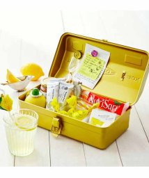 haco!/老舗工場で作られる レトロな工具箱<レモンスカッシュイエロー>/500570597