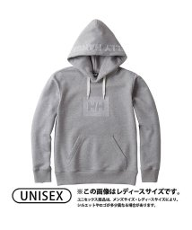 HELLY HANSEN/ヘリーハンセン/メンズ/DOUBLEWIND SWEAT H/500581876
