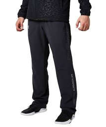 UNDER ARMOUR/アンダーアーマー/メンズ/UA TRICOT LINED PANT/500593028