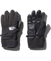 THE NORTH FACE/ノースフェイス/EARTHLY GLOVE/500593121
