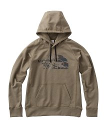 THE NORTH FACE/ノースフェイス/メンズ/COLOR HEATHERED SWEAT HOODIE/500612596