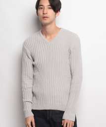 JNSJNM/【BLUE STANDARD】ポリエステルモールVネックセーター/500591469
