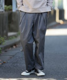 JUNRed/Dickies別注クロスタックワイドパンツ/500632011