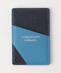 NOLLEY'S goodman/【GALLERIANT/ガレリアント】 別注カラーコンビパスケース/500635877