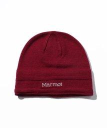 Marmot/Shadow Hat/シャドウハット(17FW)/DE0031568
