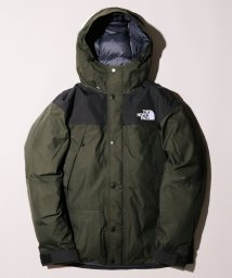 JOURNAL STANDARD relume Men's/《予約》THE NORTH FACE / ノースフェイス Mountain Down Jacket◆/500652060