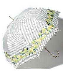 pink trick/BE SUNNY ビーサニー 長傘 【深張り】 レモンストライプ (晴雨兼用 UV 紫外線カット  耐風 軽量 撥水)/500714743
