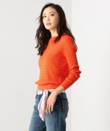 NIJYUSANKU/【2018春の限定カラー】ウォームコットン ニット/500735299
