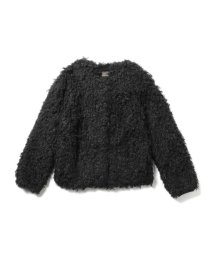 BEAMS OUTLET/Demi-Luxe BEAMS / フェイクファー ノーカラーコート/500756261