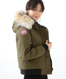 Ray BEAMS/CANADA GOOSE / Labrador/500758477