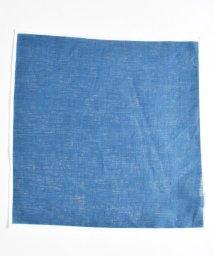 SHIPS JET BLUE/SHIPS JET BLUE: ホワイトパイピング リネンチーフ/500767941