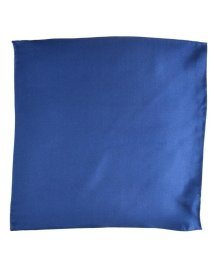 SHIPS JET BLUE/SHIPS JET BLUE: シルクチーフ/500767943