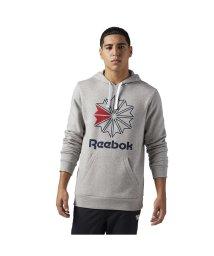 Reebok/リーボック/メンズ/F STAR HOODY/500768300