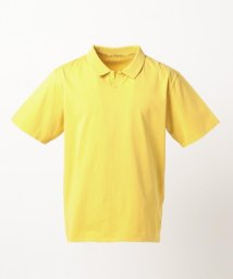J.PRESS MENS/【大人気】オーバーダイ スキッパー ポロシャツ(検索番号W153)/500806445