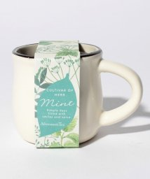 Afternoon Tea LIVING/ミニ栽培セット/500743158