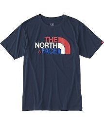 THE NORTH FACE/ノースフェイス/メンズ/S/S COLORFUL LG T/500814432