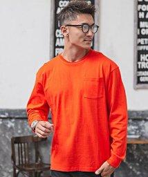 CavariA/CavariA【キャバリア】USAコットンビッグシルエットクルーネック長袖無地Tシャツ/500739132