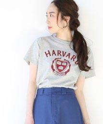 coen/USAコットンカレッジTシャツ/500825867