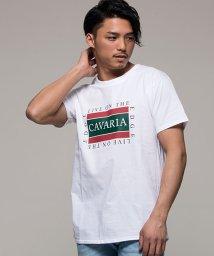 CavariA/CavariA【キャバリア】ロゴプリントクルーネック半袖Tシャツ/500863412
