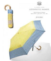 JIYU-KU /【マガジン掲載】Antoinette Poisson BOTANIQUE 傘(検/500870189