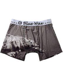 Blue Wax/BlueWax【ブルーワックス】Dolphin swim ボクサーパンツ/500876593