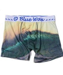 Blue Wax/BlueWax【ブルーワックス】Green wave ボクサーパンツ/500876595