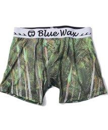 Blue Wax/BlueWax【ブルーワックス】Palm tree ボクサーパンツ/500876598