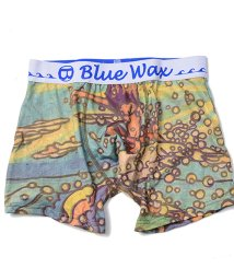 Blue Wax/BlueWax【ブルーワックス】Water spray ボクサーパンツ/500876600