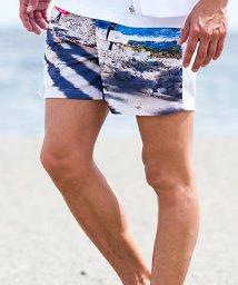 Blue Wax/BlueWax【ブルーワックス】Surfer Surf Shorts(サーフパンツ)/500876603