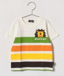 kladskap/ライオンマルチボーダーTシャツ/500859345